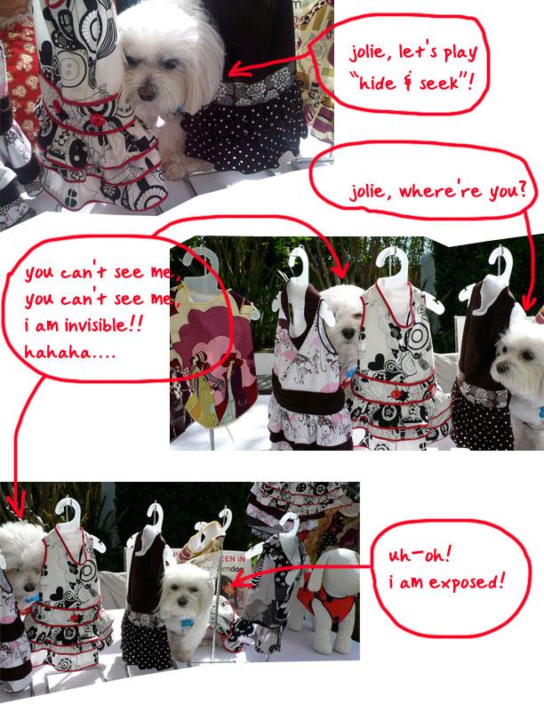 DogEvent_Collage2.jpg
