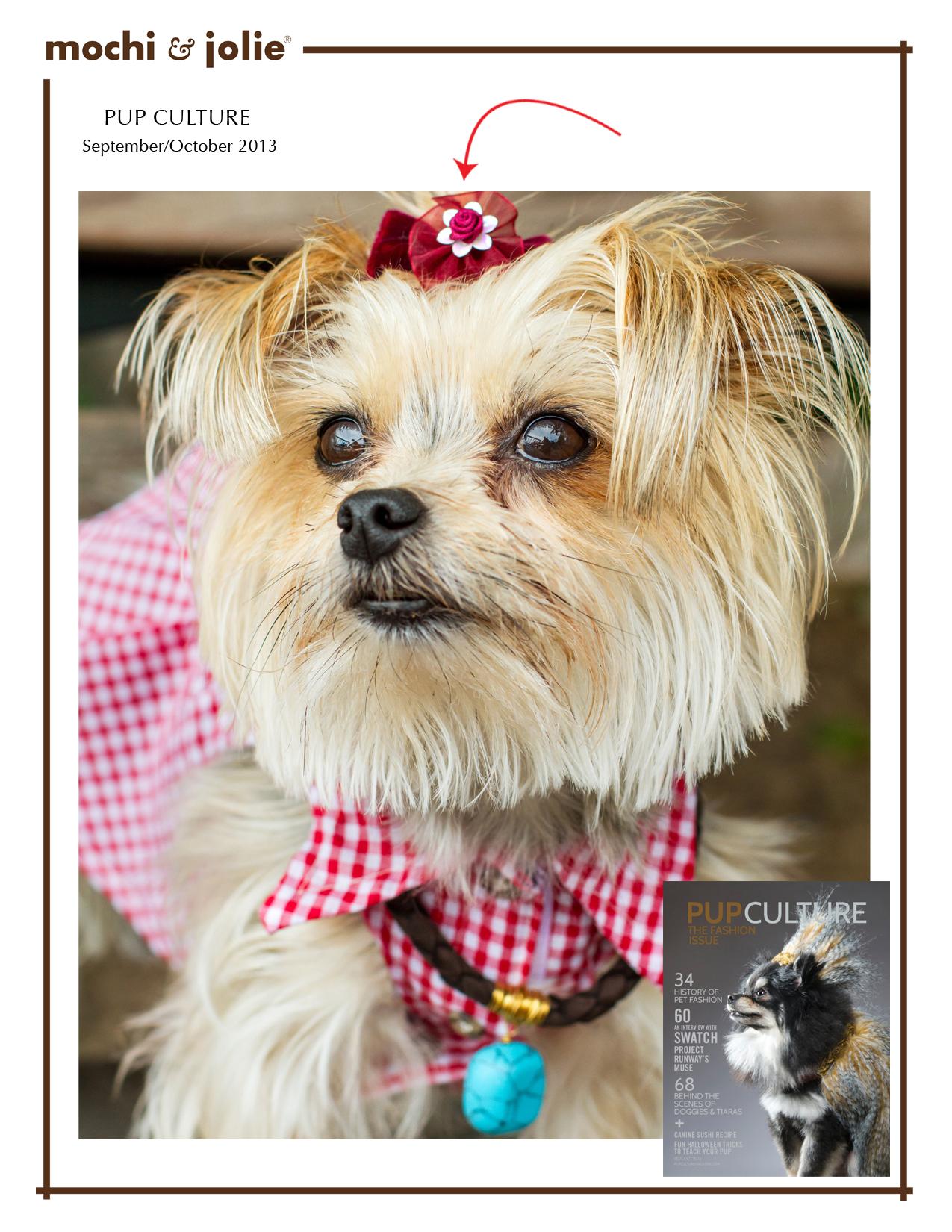 Pup Culture (September/October 2013)