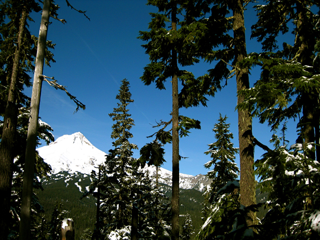 Mt. Hood Ski
