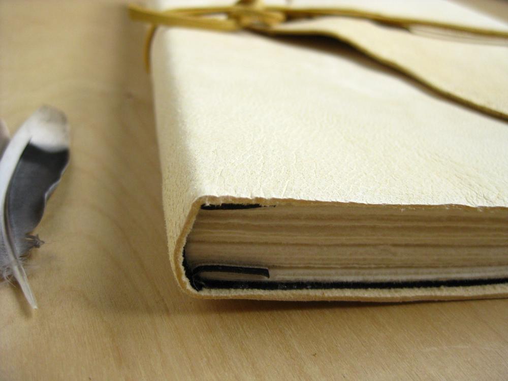 The Indulgence Book_11087600646_l.jpg