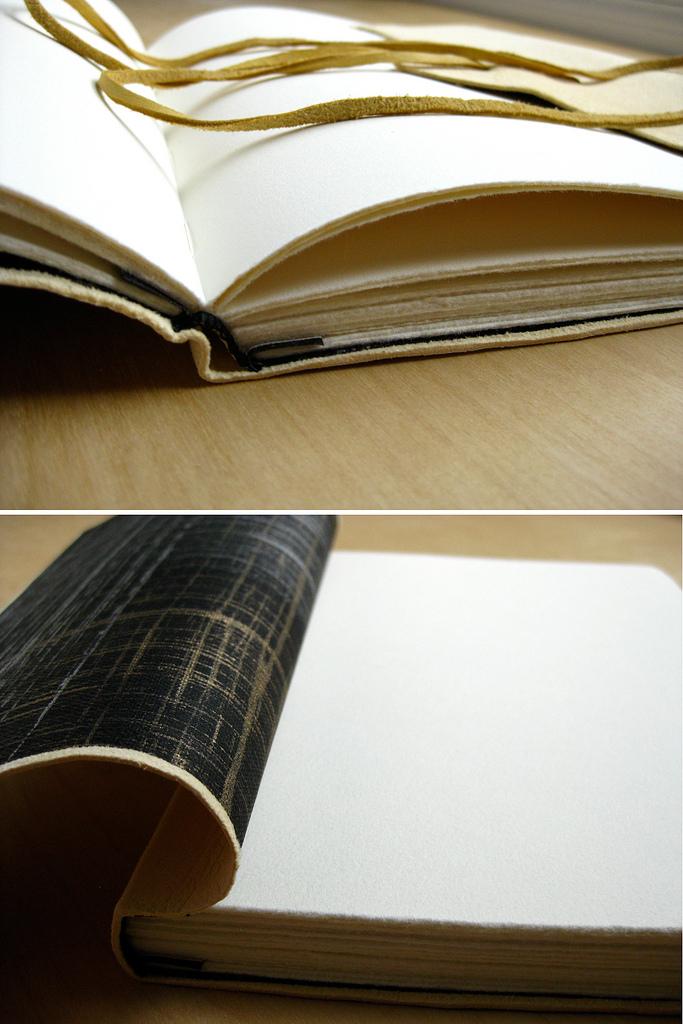 The Indulgence Book_11087712603_l.jpg