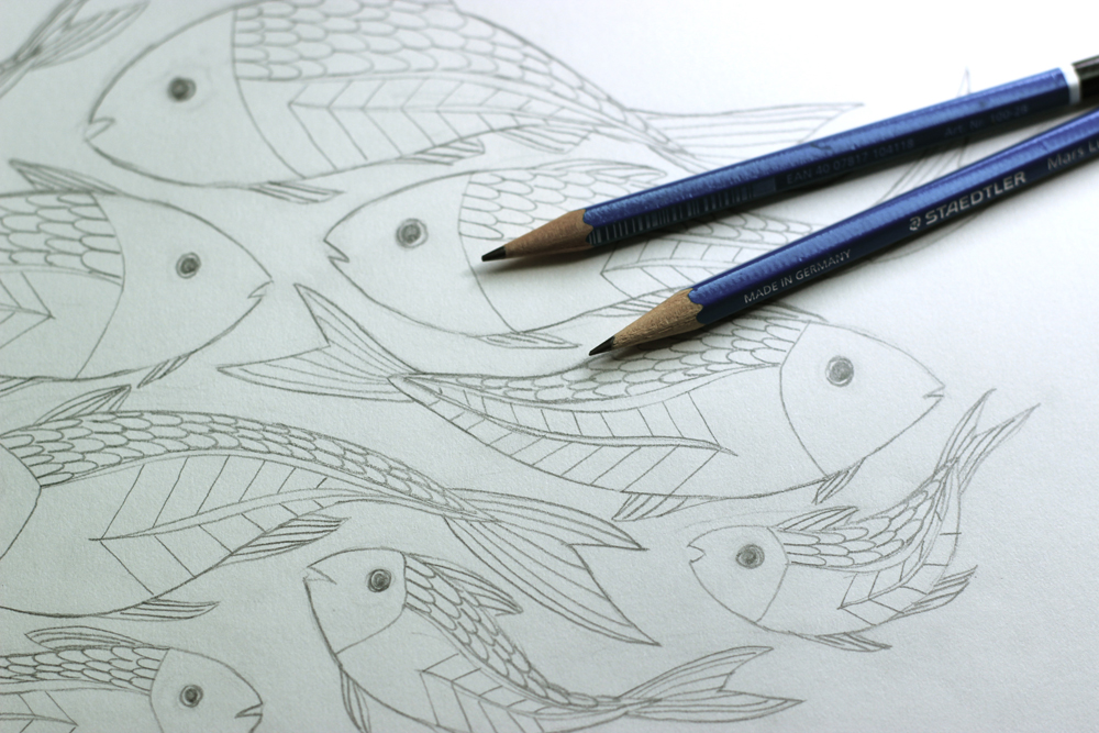 minnow-drawing