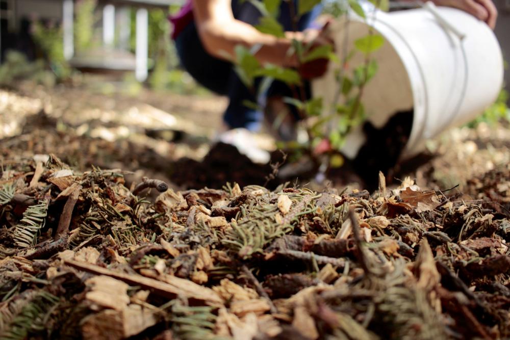 filling-in-soil