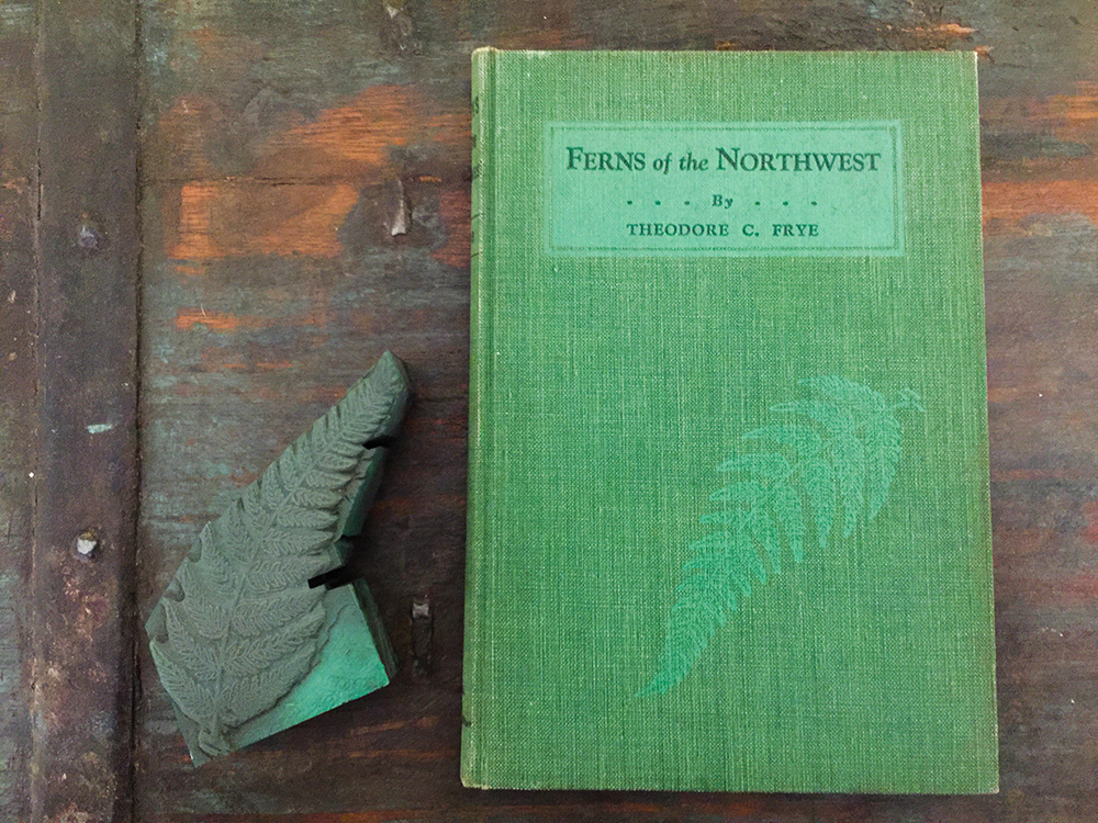 Ferns of the Northwest by Theodore C. Frye