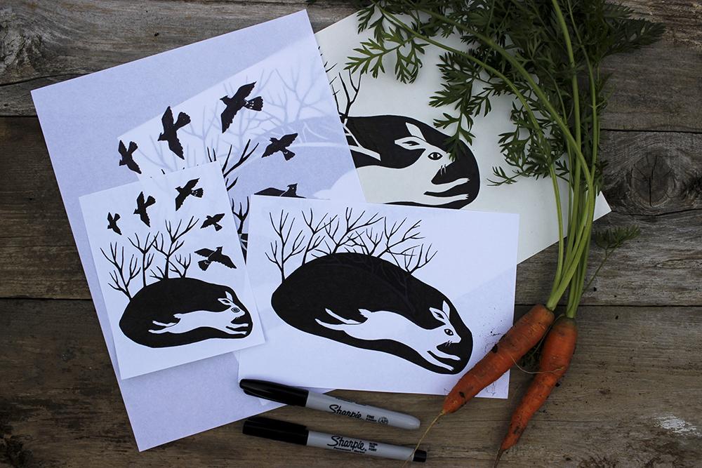rabbit process drawings