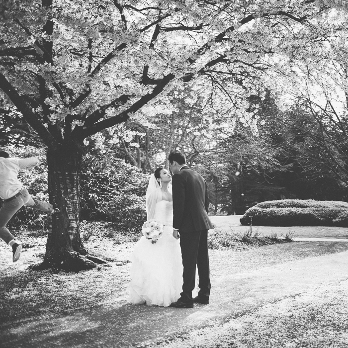 Vancouver Wedding Photography | Tomasz from Mananetwork trying to make it rain cherry blossoms on Alfred and Josephine.