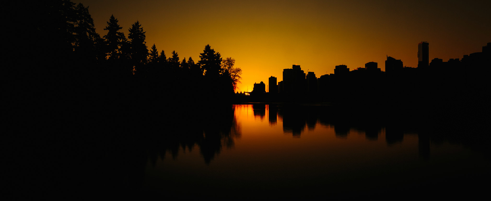 Half and Half. Nature and City. I'm fortunate to call this home. Stanley Park, Vancouver, B.C., Canada
