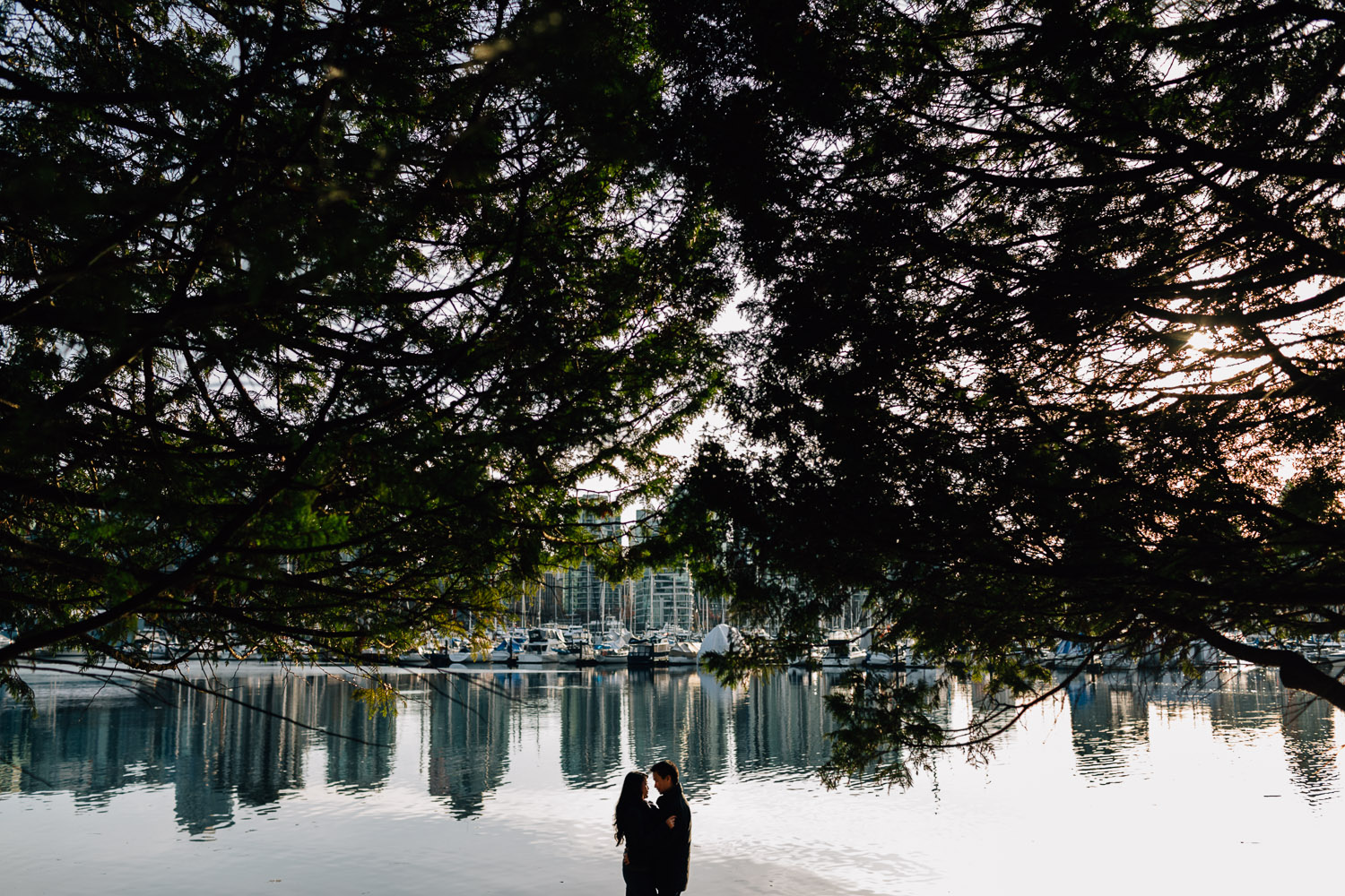 engagement photographer in vancouver at stanley park