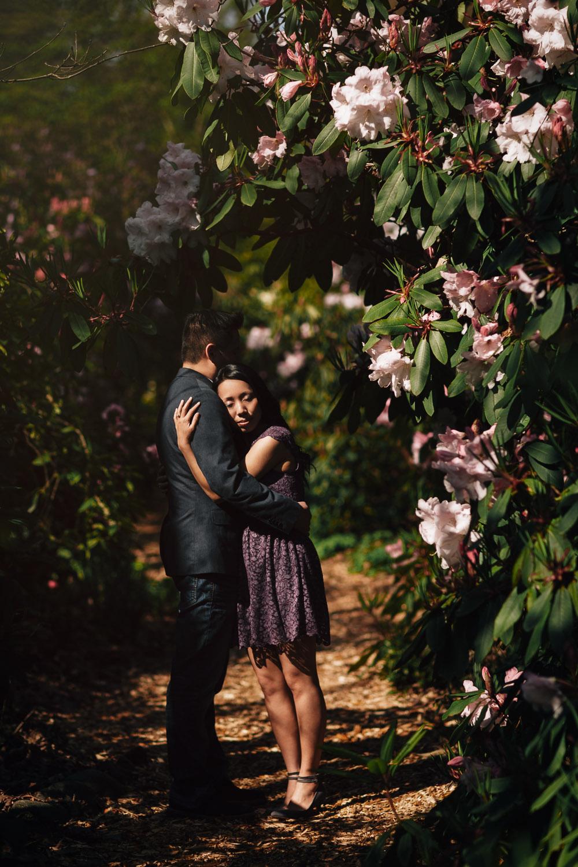 vandusen botanical garden engagement photography spring