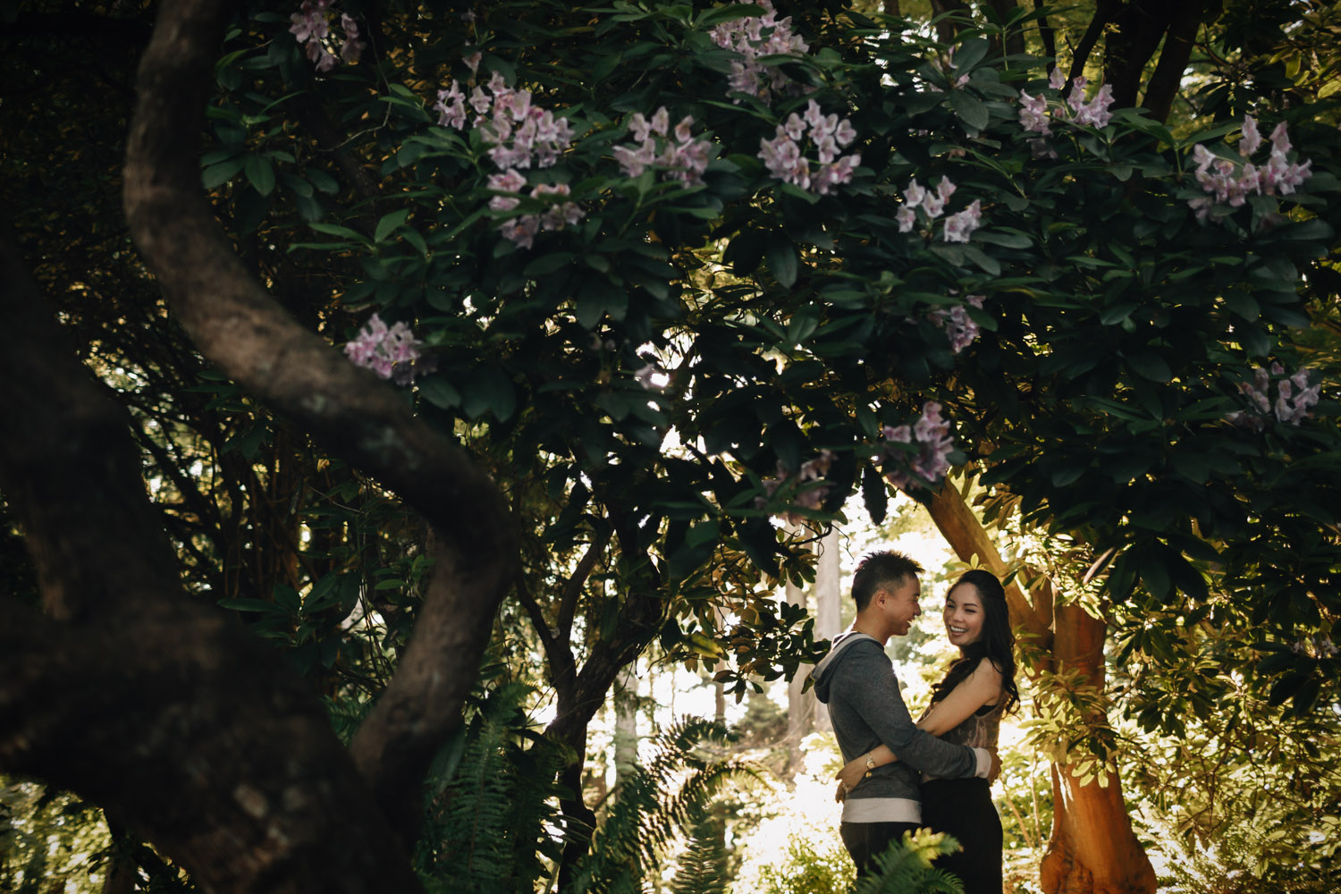 vancouver engagement photographer in stanley park