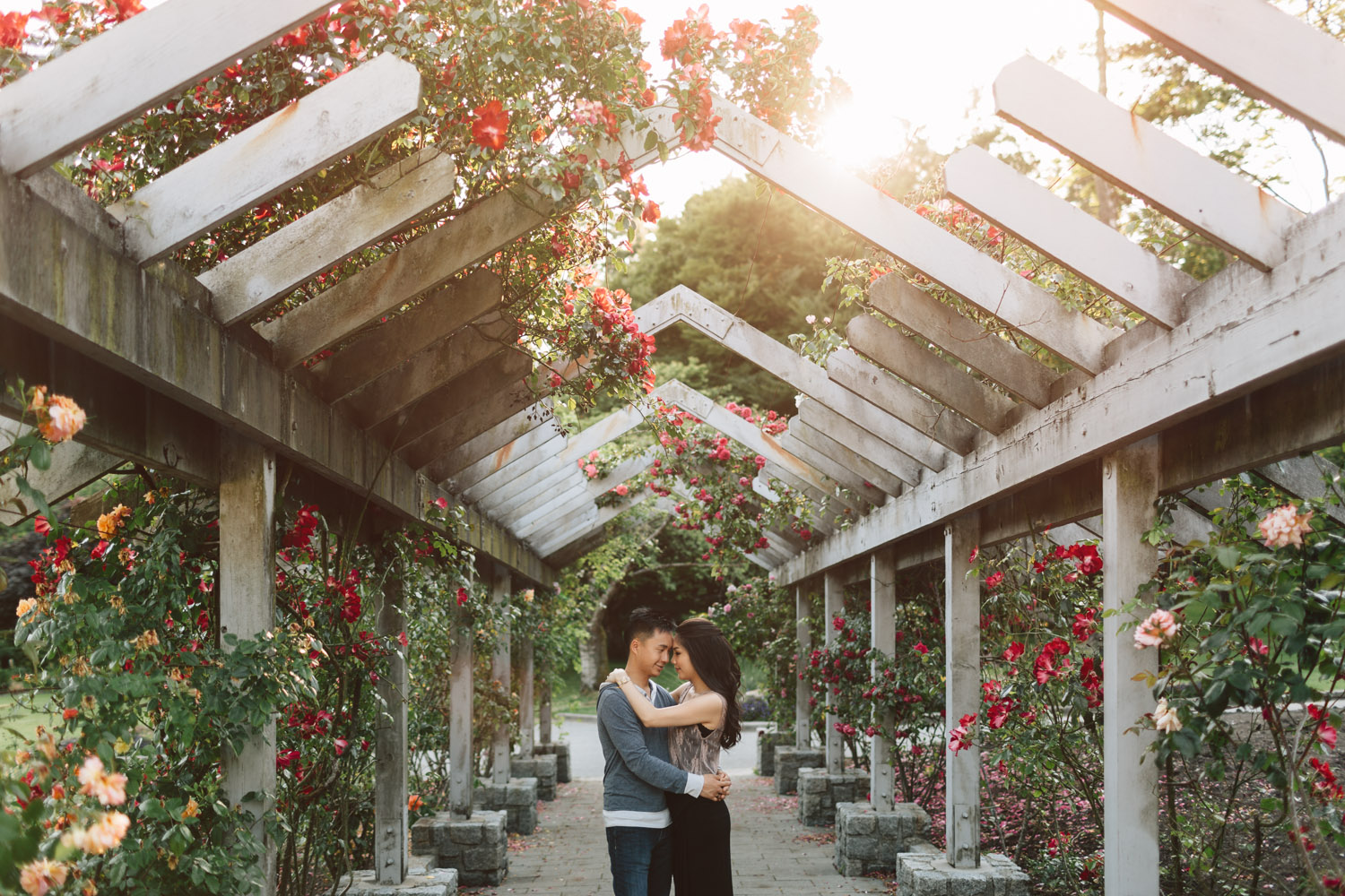 rose garden canopy stanley park vancouver engagement photographer