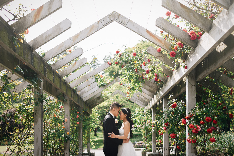 stanley park rose garden wedding portrait celebration photography