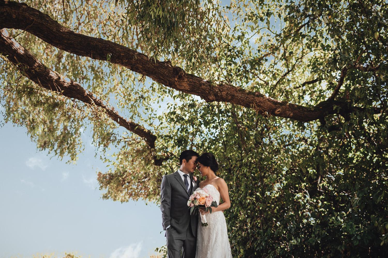 terra nova richmond bc wedding photography