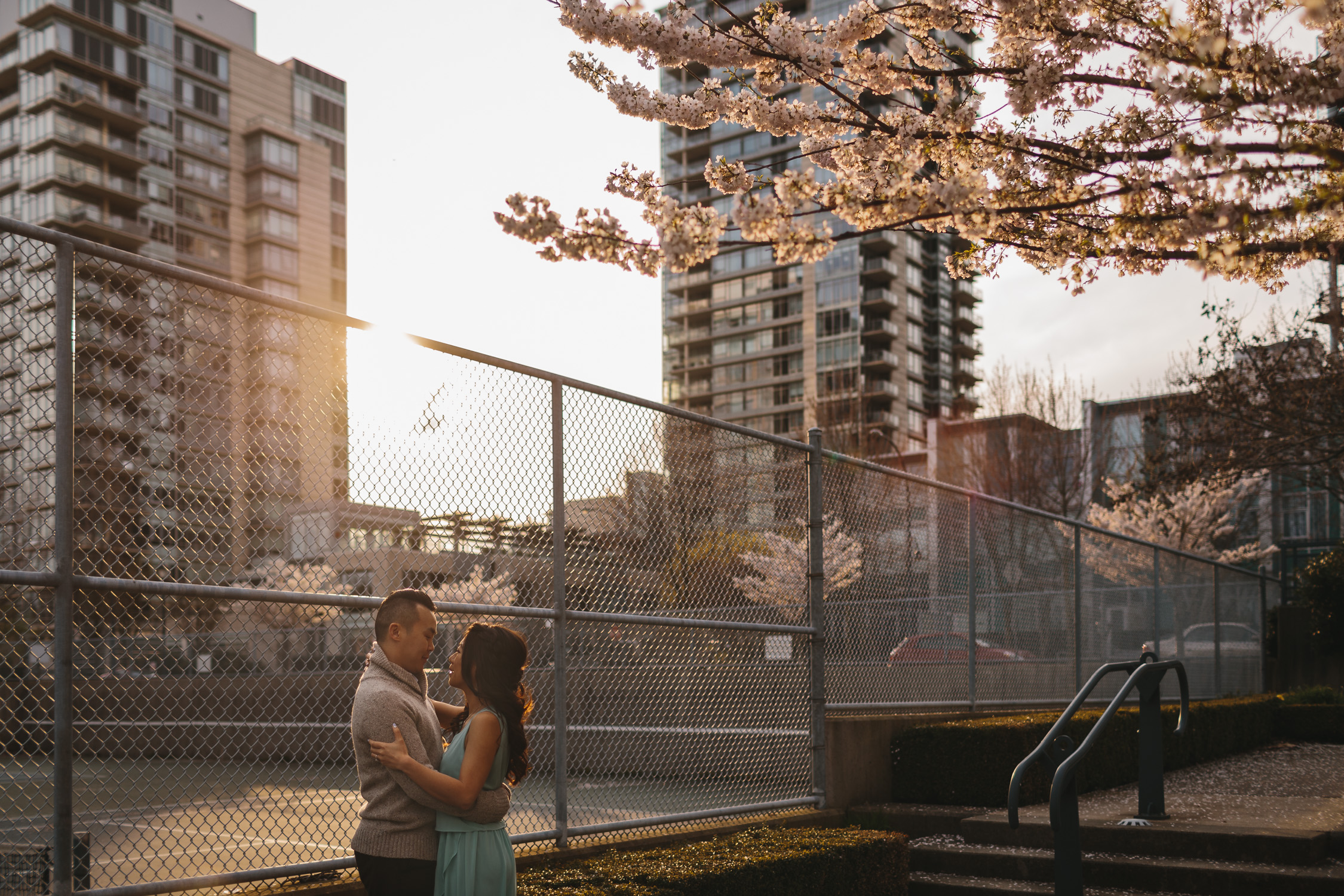 vancouver engagement photography cherry blossoms in yaletown david lam park