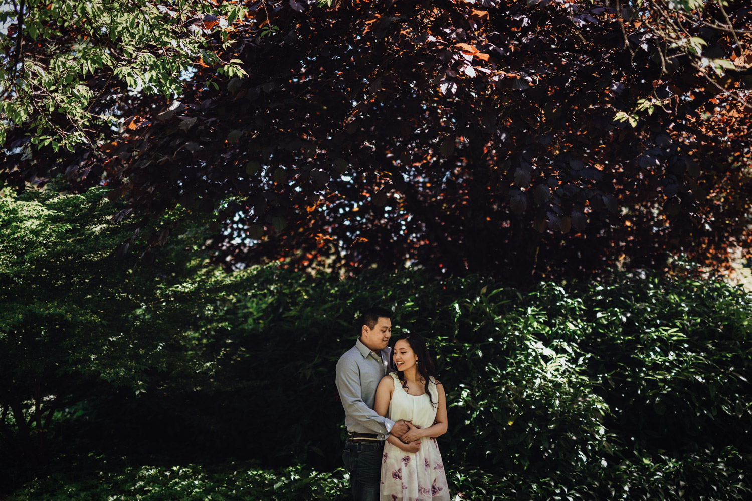 vancouver engagement photography at stanley park in rose garden