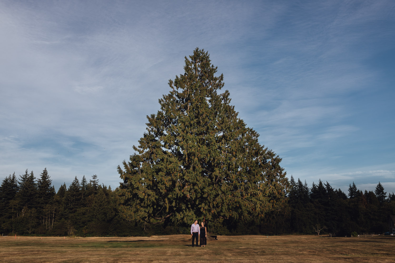 Campbell Valley Park engagement photography in Langley BC during summer