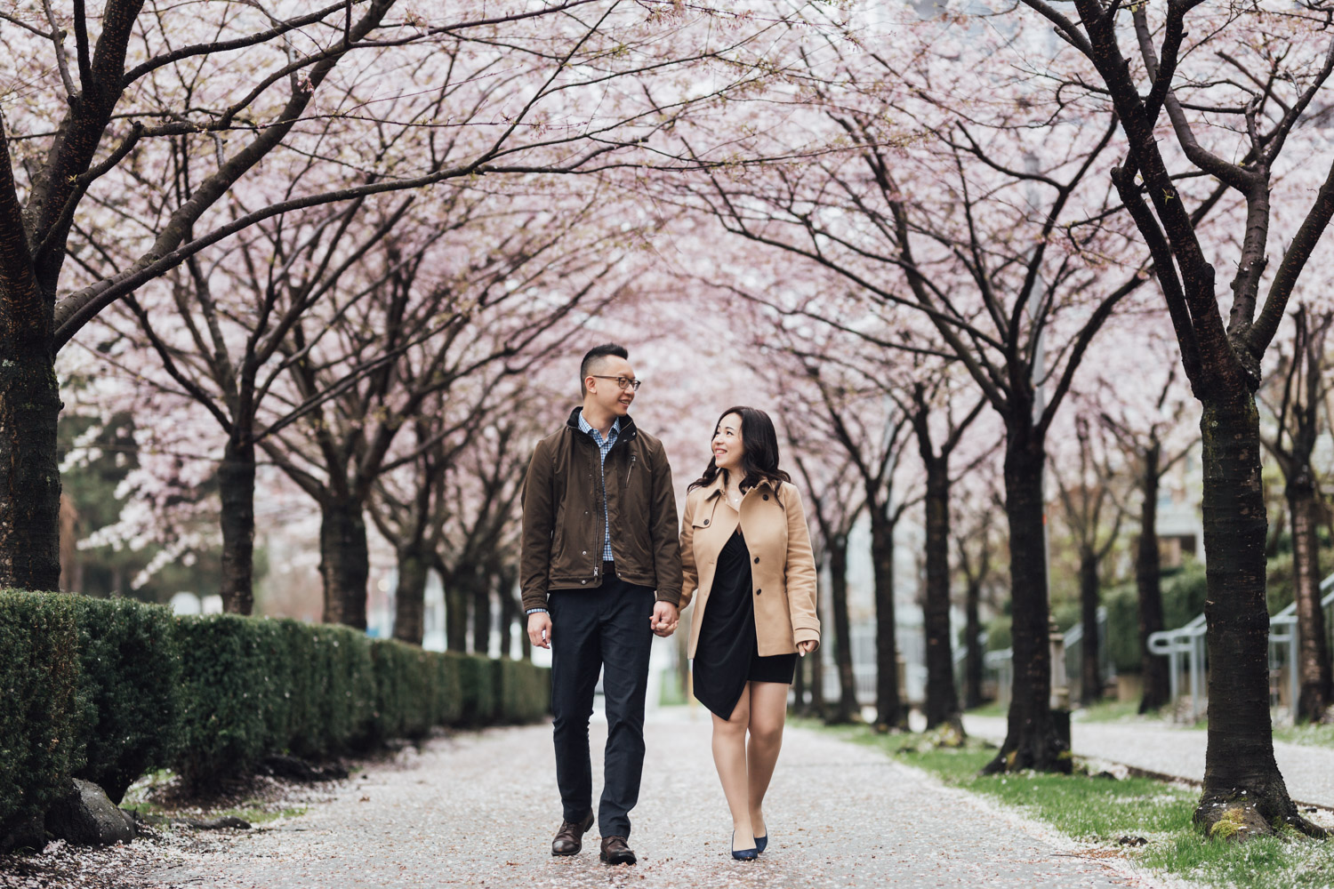 vancouver cherry blossom engagement photography