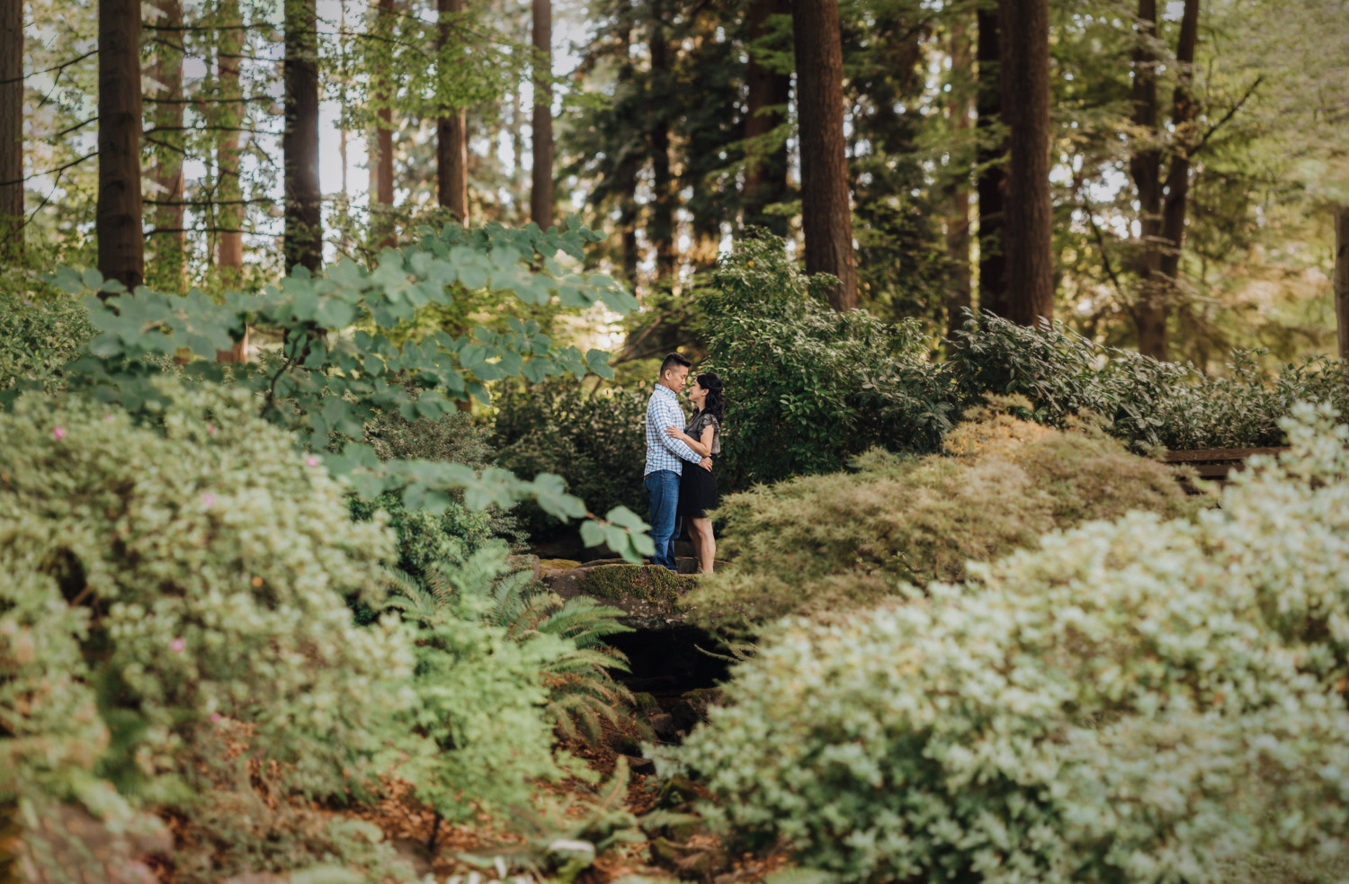 stanley park summer engagement rose garden vancouver bc photography