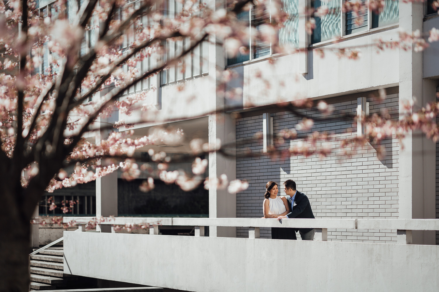 UBC Cherry Blossoms engagement photography in Vancouver