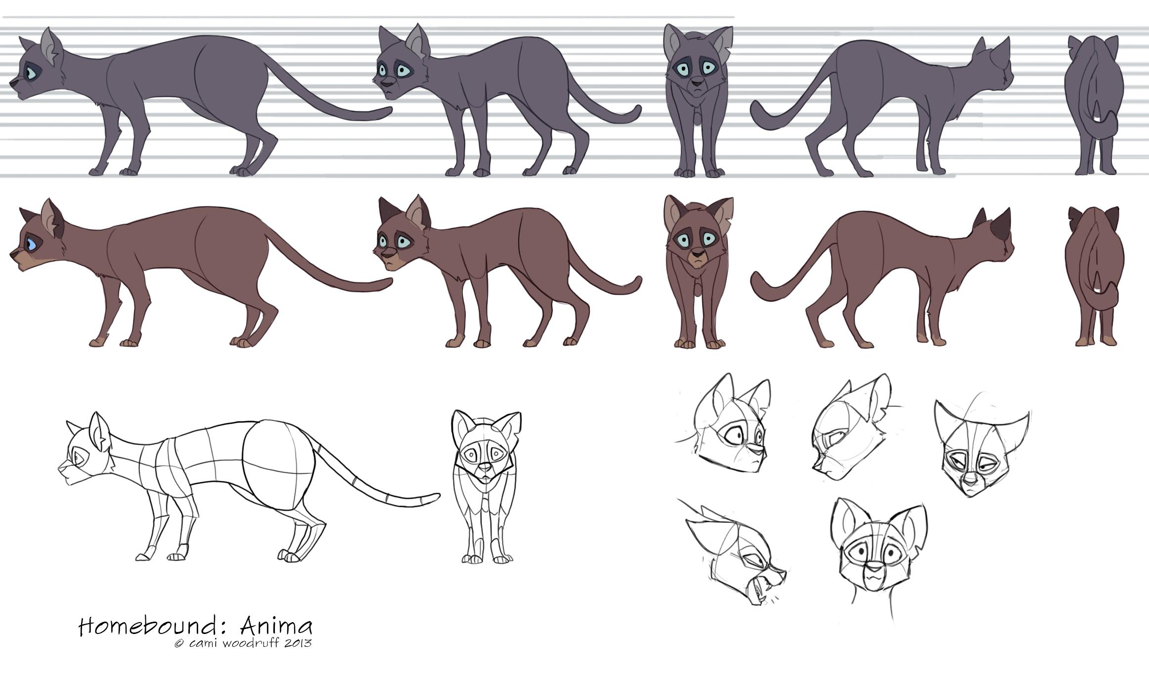 Anima model sheet