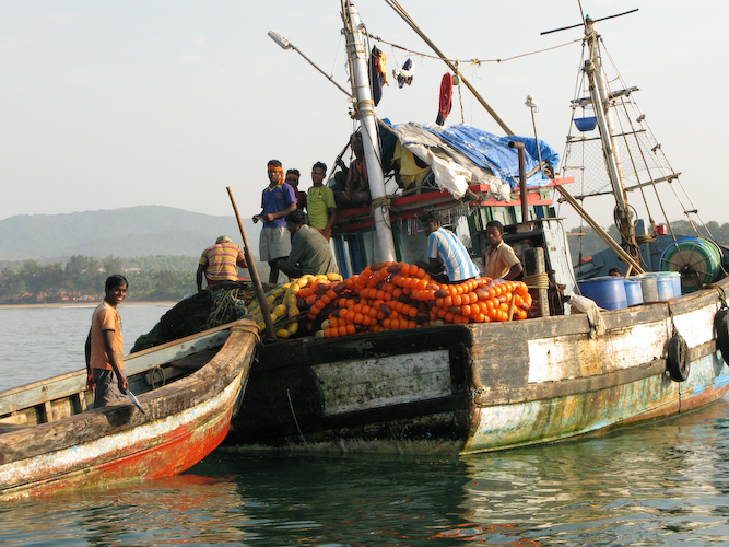 4 Fishing boats in Agonda.jpg