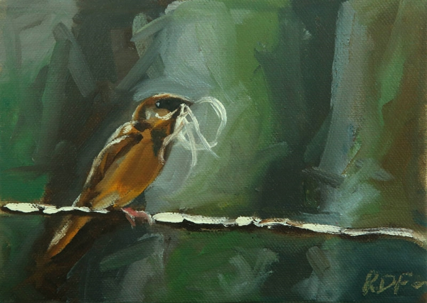 "The smallest bird- 5"" x 7"" oil on canvas -  click to see it on etsy"