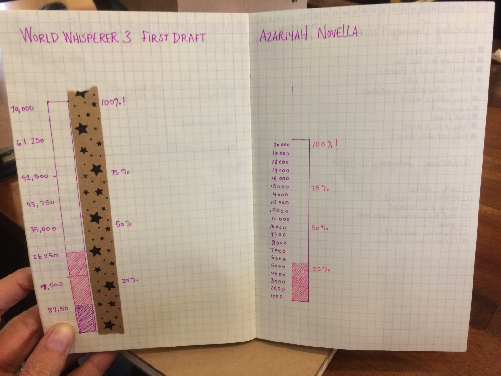 Yes, those are odd increments. I got confused! I'm not a graph maker!