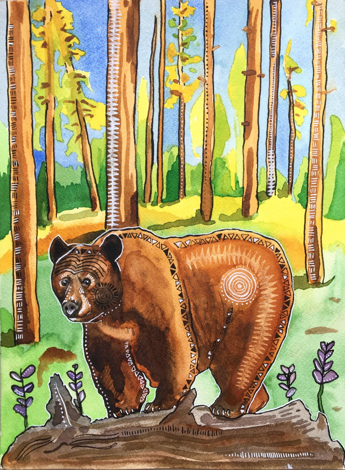 Brown Bear for web.JPG