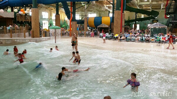 all four of our little ducks enjoyed the wave pool!