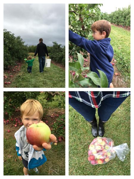 Whittier Fruit Farm in Ogden, New York
