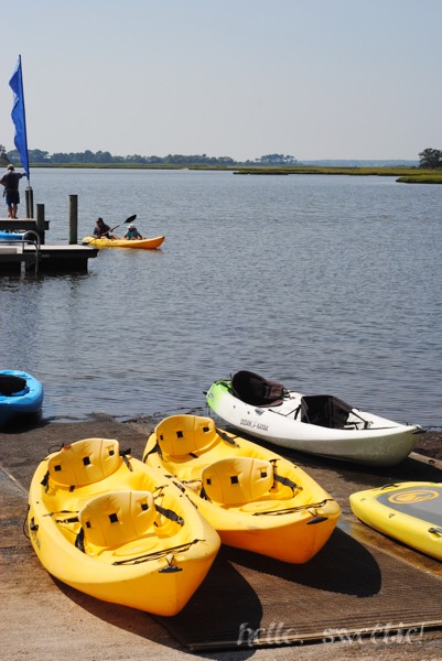 There are so many activities available for you in the Bayside community, such as kayaking, crabbing, paddle boating and swimming.