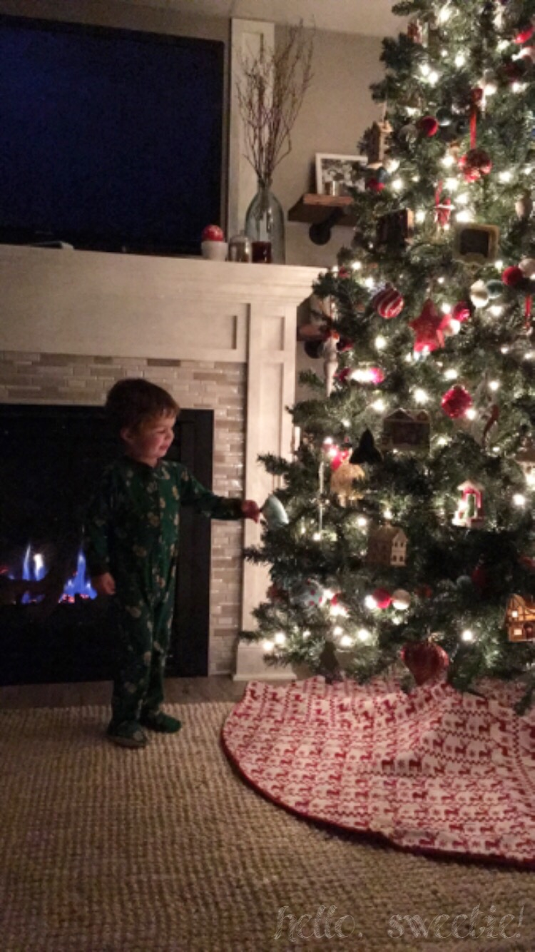 The Christmas tree is typically the only light we need in the evening.