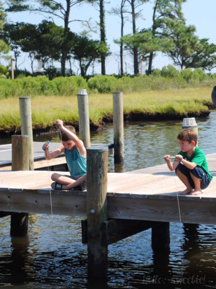 A guide to enjoying a beach vacation on Fenwick Island, Delaware with your whole family.