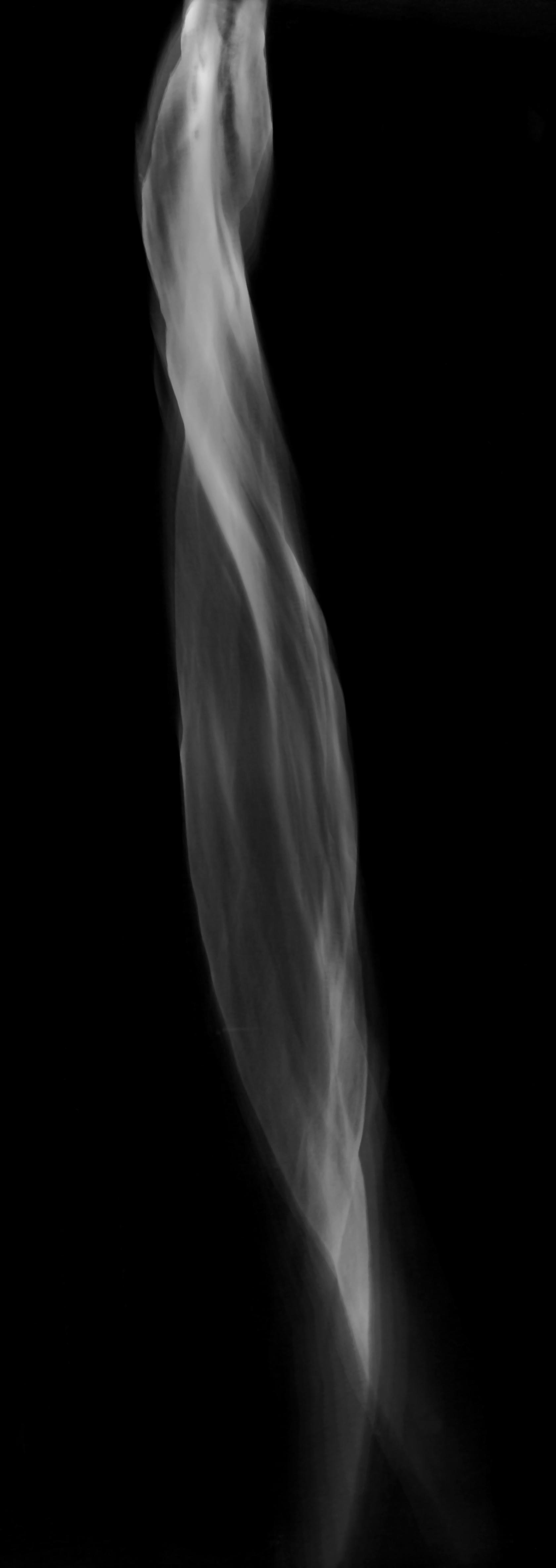 'Purgatory of Light'  photogram 45 x 20 cm