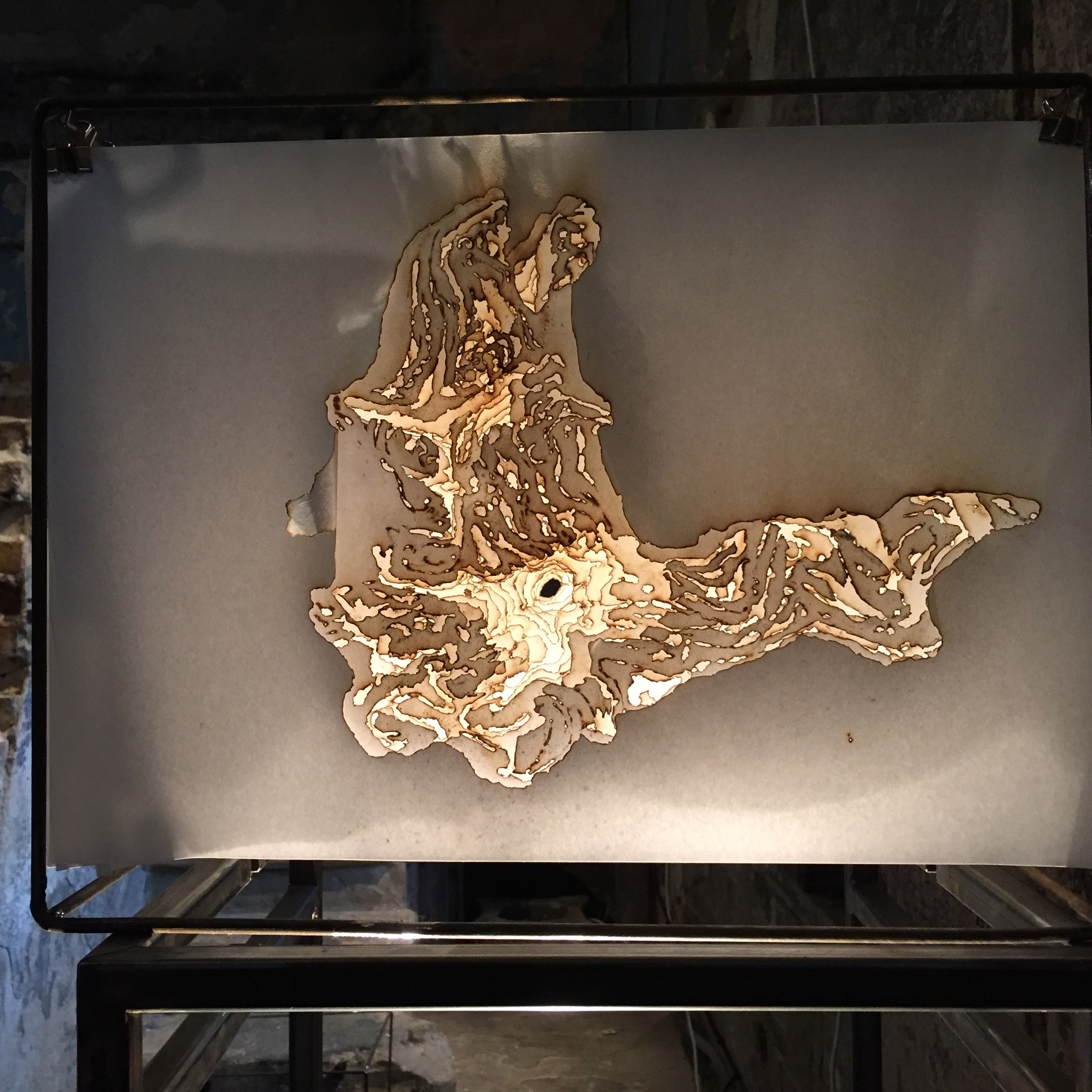 'Cloud Root' , 30 layers of incense burnt rice paper, 45 x 35 cm