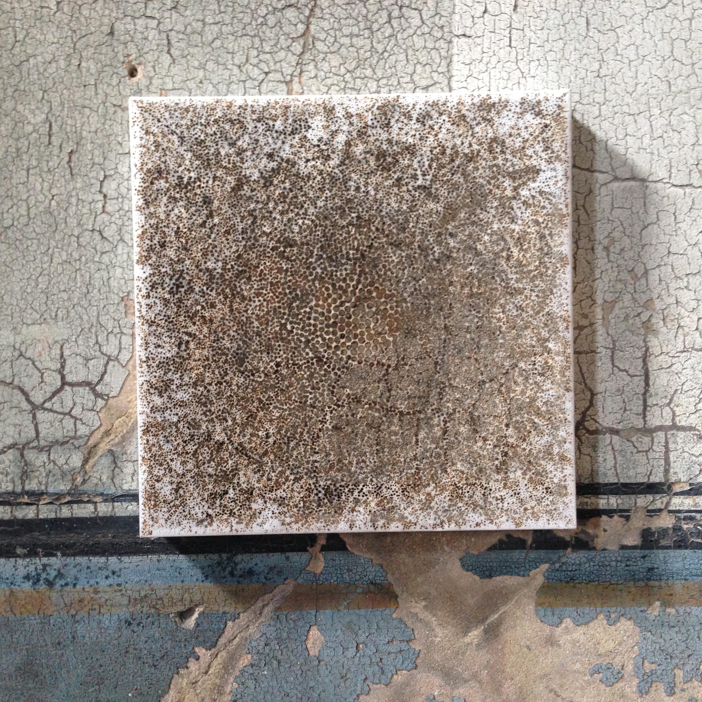 'Perception', incense burnt rice paper, 30 x 30 cm
