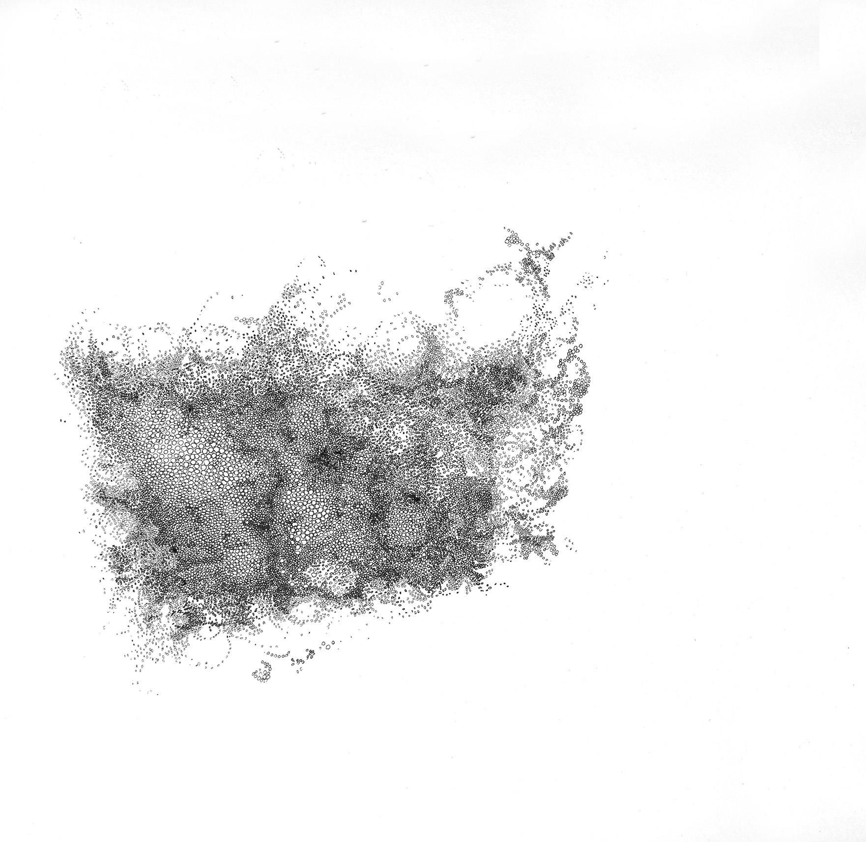 'spawn I' , ink on paper, 30 x 30 xm