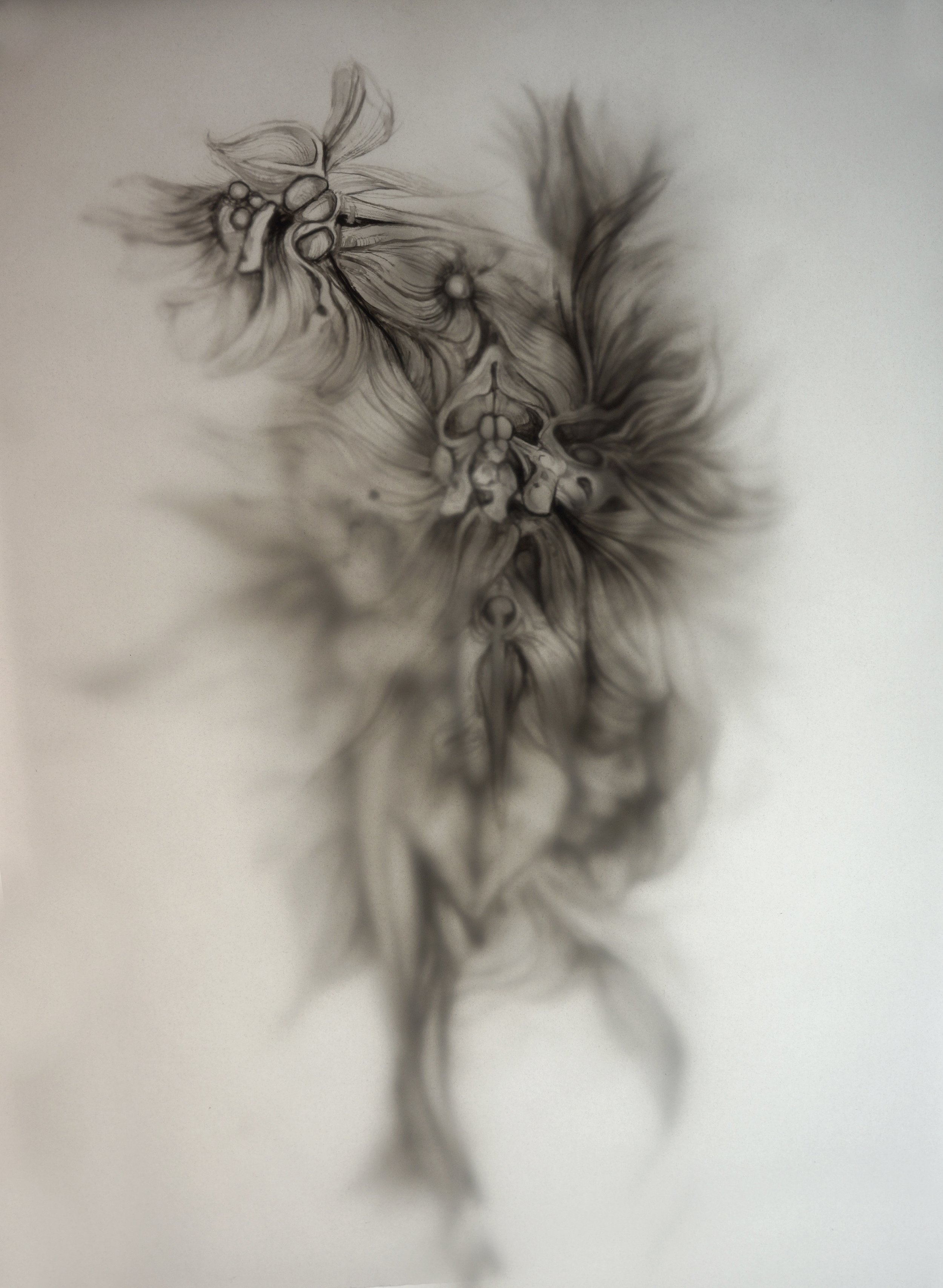 two layers of pencil on drafting film over lightbox, 30 x 21 cm