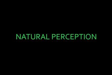 Group Show, 'Natural Perception'April 2013