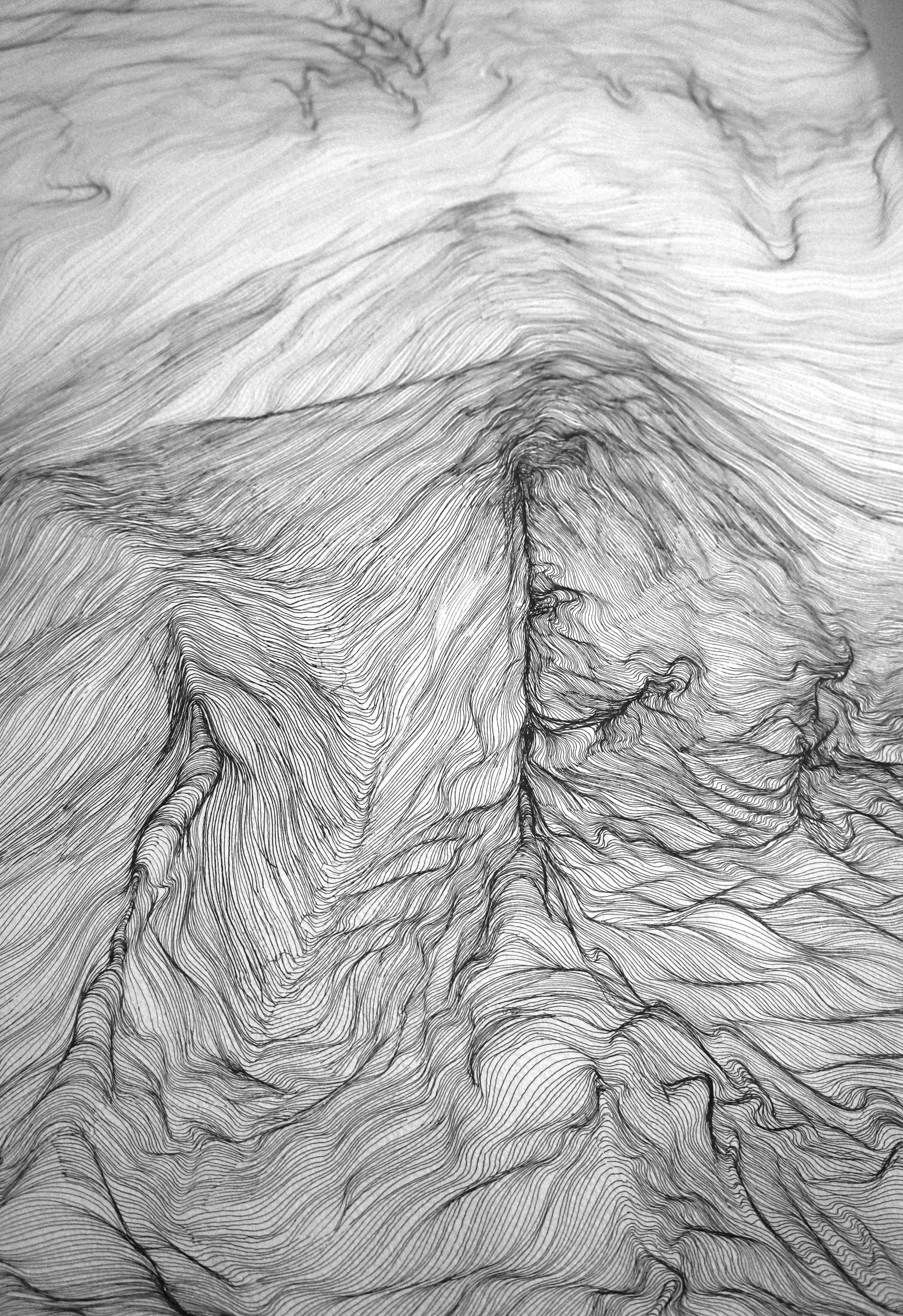 detail, black rotering pen ink on white paper