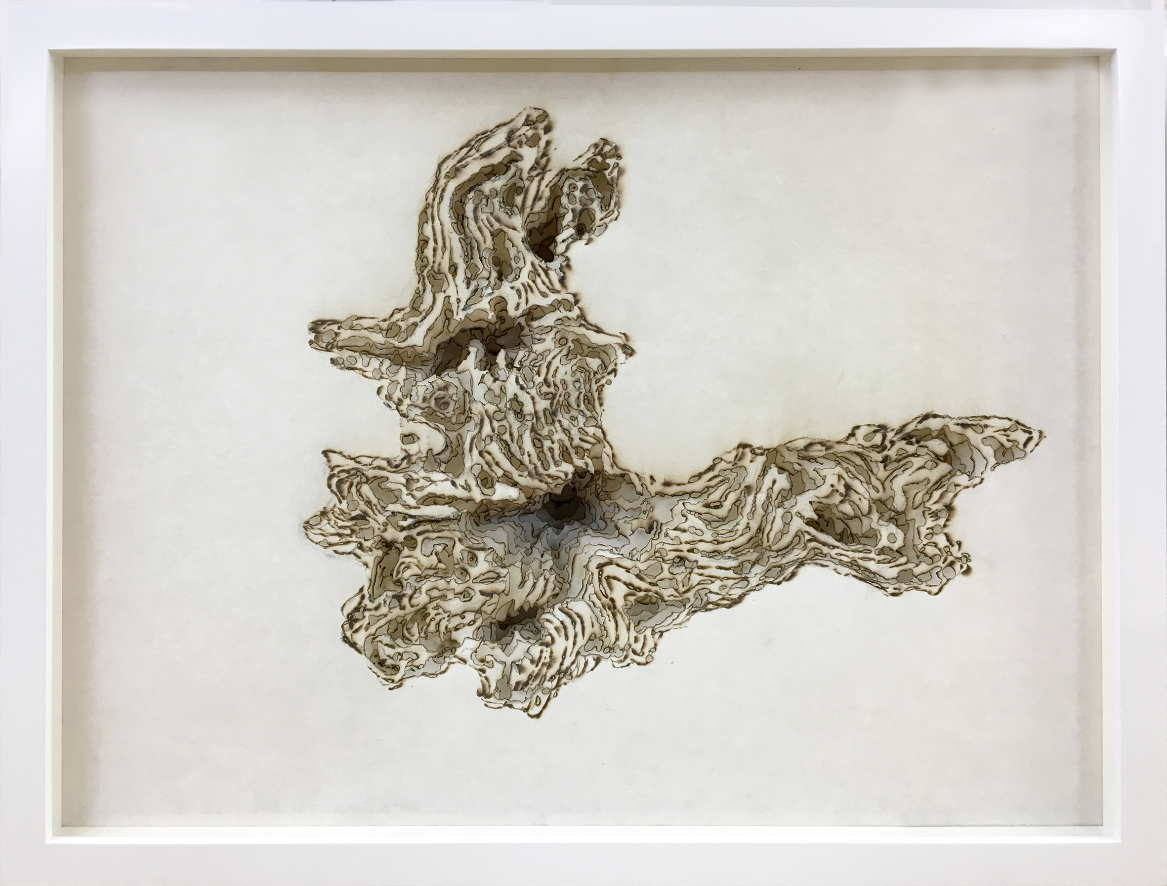 Cloud root ,  15 layers of incense burnt rice paper  30 x 45 cm