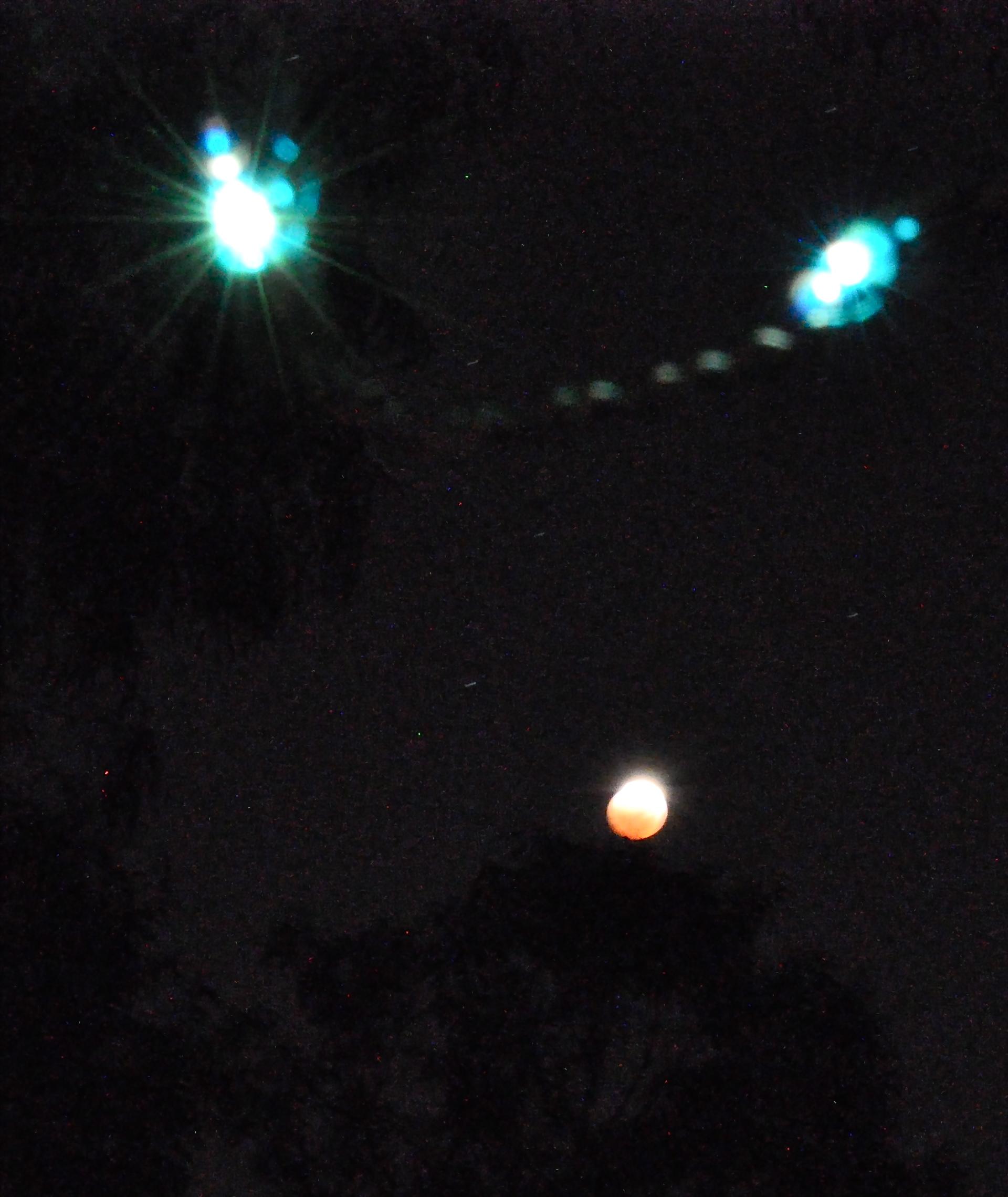 Lunar eclipse meets Christmas lights...