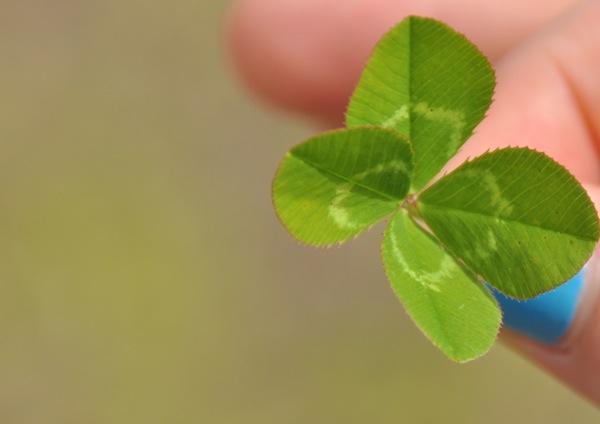is_it_luck_web.jpg