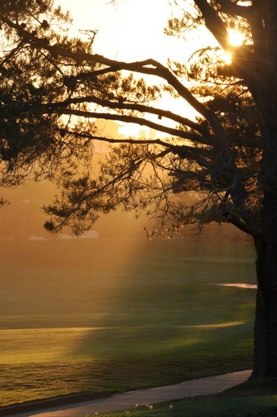 golfinglight_web.jpg