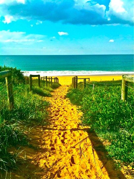 beachshine_web.jpg