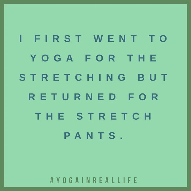 Oh, Glorious stretch pants—You are the reason I keep doing yoga....or at least the reason I pretend I still do yoga 😳#yogapantsforlife