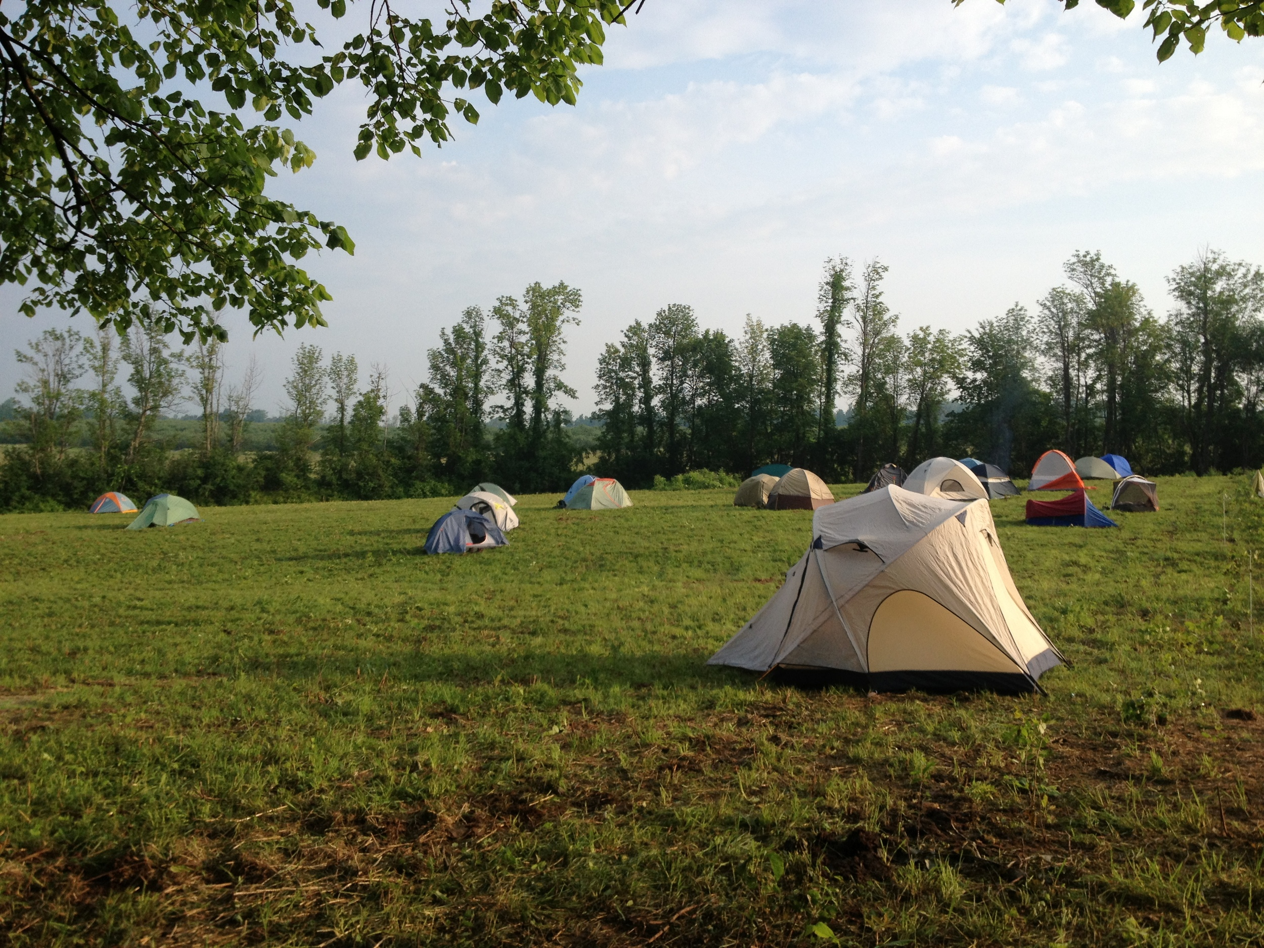 By the light of morning, you can hardly tell that all these tents were pitched in the pitch black of night!