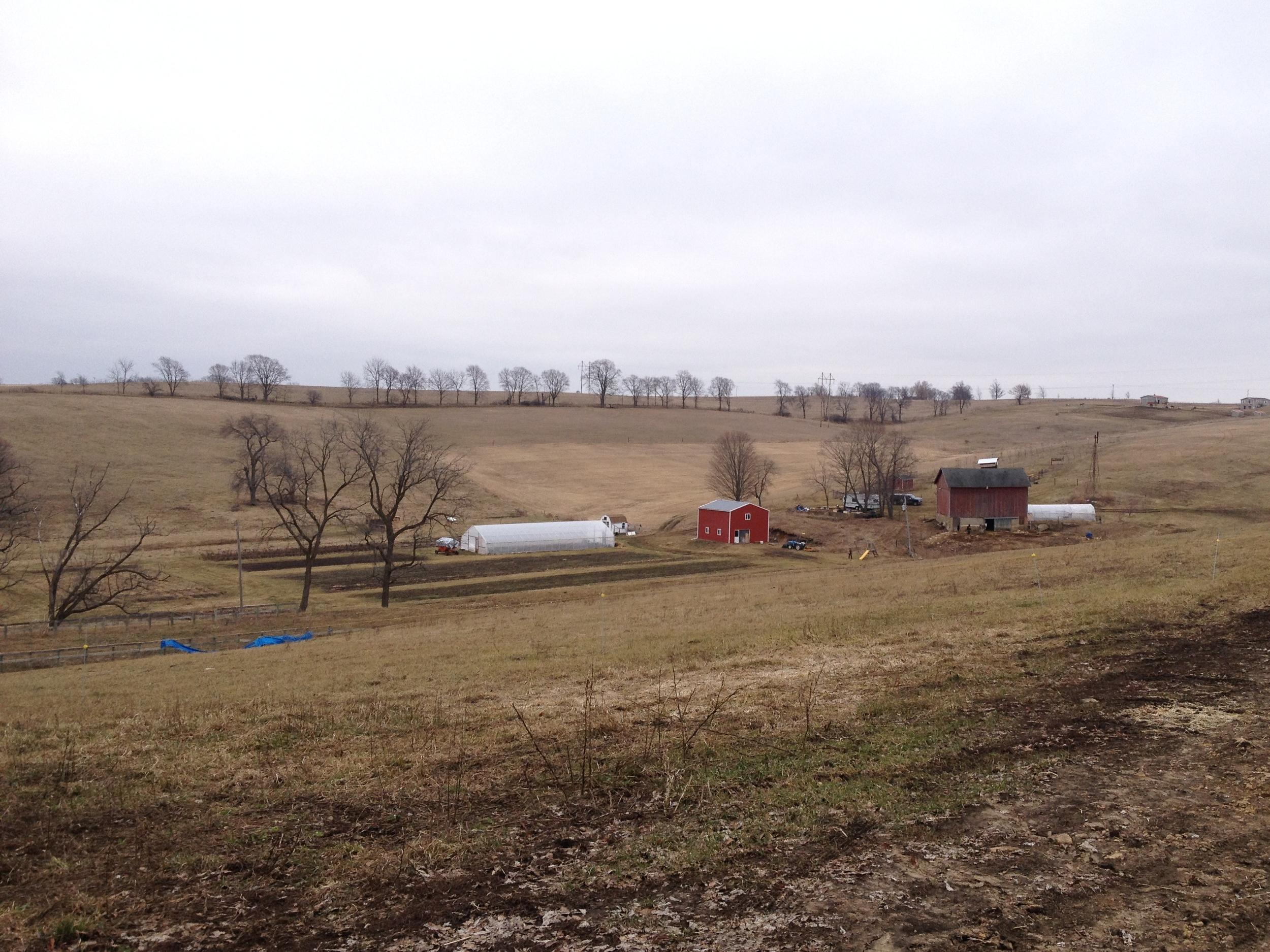 Grassroots Farm