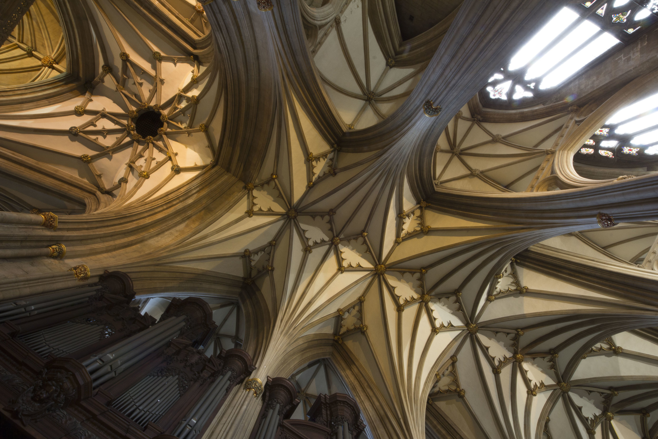 Cathedral roof-5.jpg