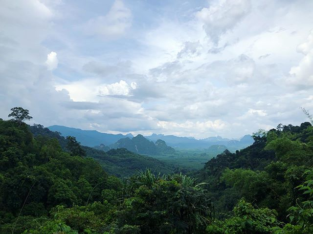 The jungles of Khao Sok #dreamy